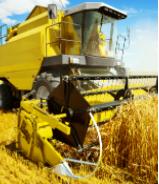 Agribusiness & Distribution